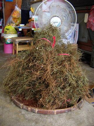 將風茹草整理並捆綁好,就可以準備收藏起來,自用送人兩相宜